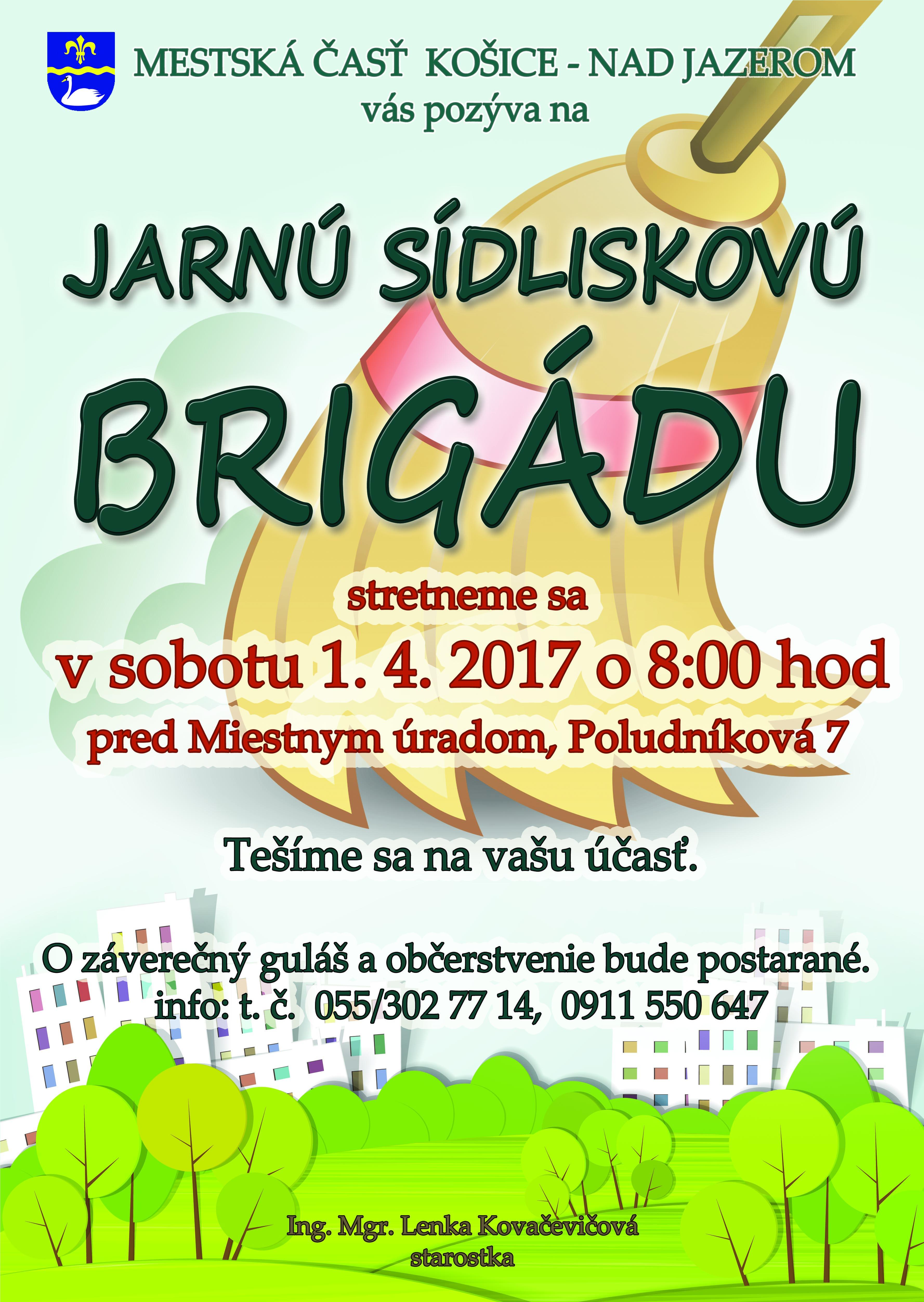 brigada2017